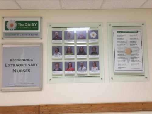 DAISY FOUNDATION NURSE DISPLAY