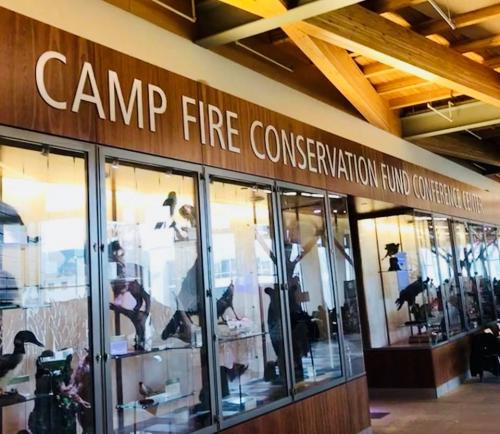Camp Fire Conservation Fund  routed dimensional letters with brushed silver face